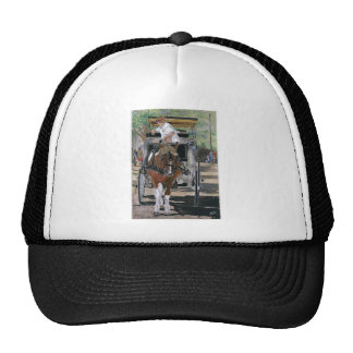 Horse lovers delight! mesh hat