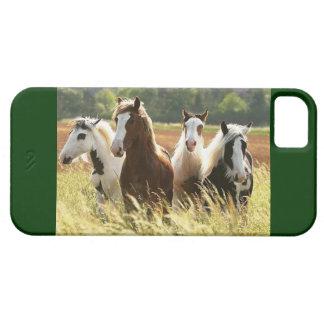 HORSE LOVERS DREAM IPHONE 5 CASE