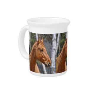 Horse-lover's Equine Animal Design Beverage Pitcher