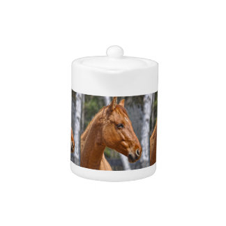 Horse-lover's Equine Animal Design Teapot