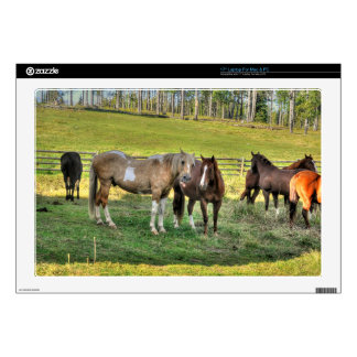 """Horse-lover's Equine Photo on a BC Ranch 17"""" Laptop Skin"""