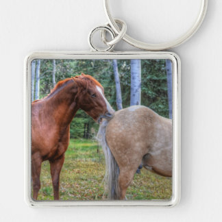 Horse-lover's Equine Photo on a BC Ranch Keychain
