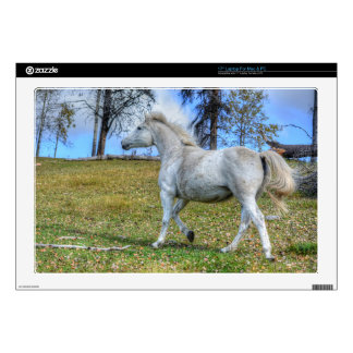 Horse-lover's Equine Photo on a BC Ranch Laptop Decal