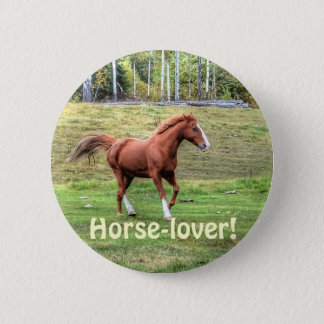 Horse-lover's Equine Photo on a BC Ranch Pinback Button