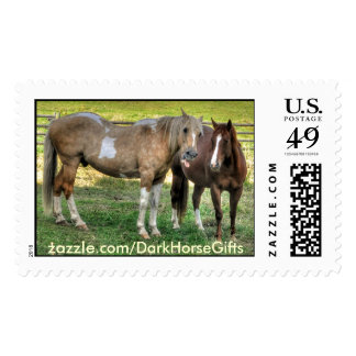 Horse-lover's Equine Photo on a BC Ranch Postage Stamps