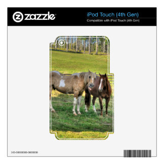 Horse-lover's Equine Photo on a BC Ranch iPod Touch 4G Decals