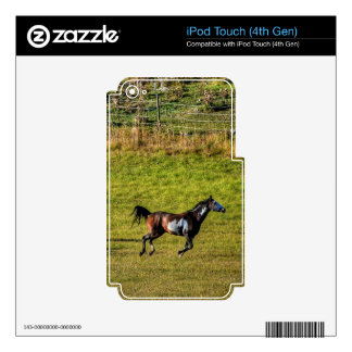 Horse-lover's Equine Photo on a BC Ranch Decals For iPod Touch 4G