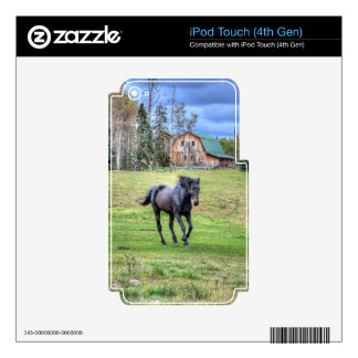 Horse-lover's Equine Photo on a BC Ranch iPod Touch 4G Decal