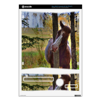 Horse-lover's Equine Photo on a BC Ranch Xbox 360 S Console Decal