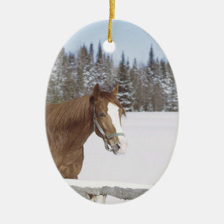 Horse Lovers Holiday Decorations Ornaments