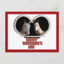 Horse Lovers Valentine Holiday Postcard