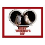 Horse Lovers Valentine Postcard