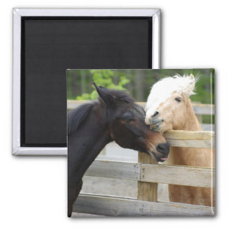Horse Lovin' 2 Inch Square Magnet