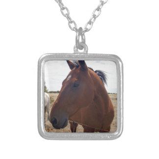 Horse_Magic, _ Collar Plateado