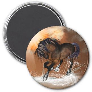 Horse Fridge Magnets