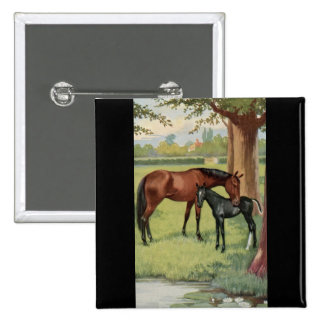 Horse Mare Foal Equestrian Vintage Image Pinback Button