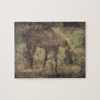 Horse Memories Grunge Jigsaw Puzzles