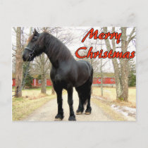 Horse Merry Christmas.jpg Holiday Postcard