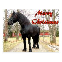 Horse Merry Christmas.jpg Postcard