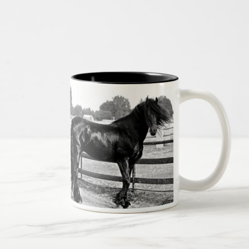 Horse modelling coffee mugs