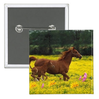 horse mom and baby pin