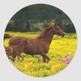 horse mom and baby classic round sticker
