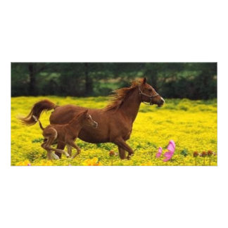 horse mom and baby photo card
