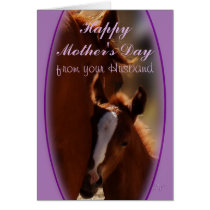 Horse Mother's Day from Husband- or any occasion Card