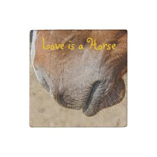 Horse Muzzle Horse-lovers Equine Photo Stone Magnet
