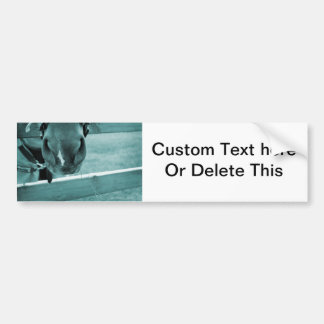 horse muzzle with hay fence blue bumper sticker