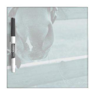 horse muzzle with hay fence blue dry erase board