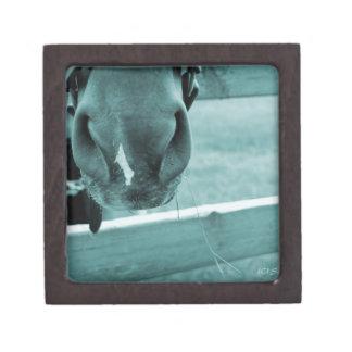 horse muzzle with hay fence blue keepsake box
