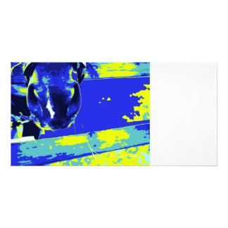 horse muzzle with hay fence blue yellow graphic personalized photo card