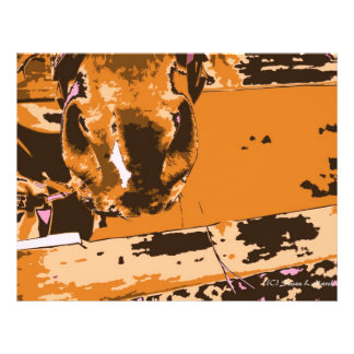 horse muzzle with hay fence brown graphic custom flyer