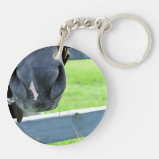 horse muzzle with hay fence keychain