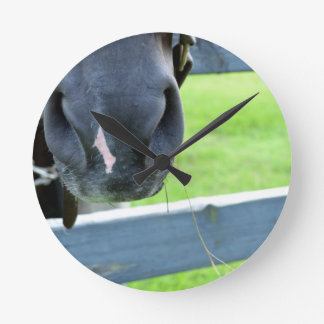 horse muzzle with hay fence round clock