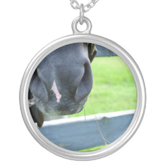 horse muzzle with hay fence silver plated necklace
