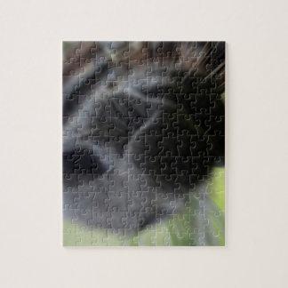 horse muzzle zoomed equine image jigsaw puzzle