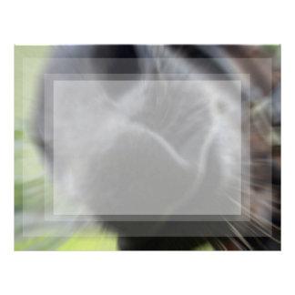 horse muzzle zoomed equine image letterhead design