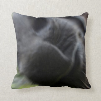 horse muzzle zoomed equine image throw pillow