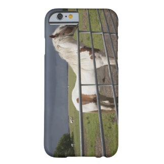 Horse near a fence barely there iPhone 6 case
