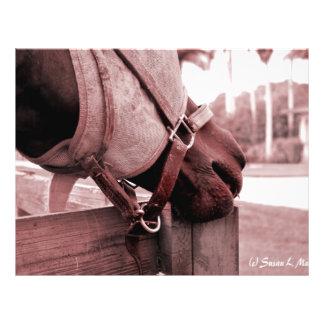 horse nom nom red brown tone flyer