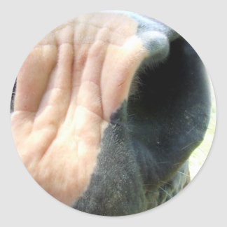 Horse Nose Classic Round Sticker