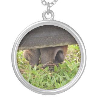 Horse nose grazing under fence round pendant necklace