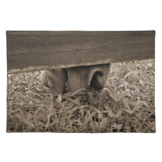 Horse nose grazing under fence toned placemat