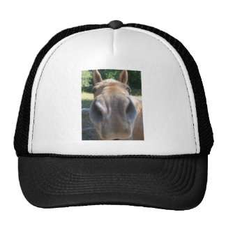 Horse Nose Hats