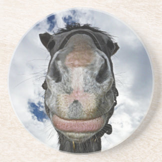 Horse Nose Knows! Funny Smiling Horse Sandstone Coaster