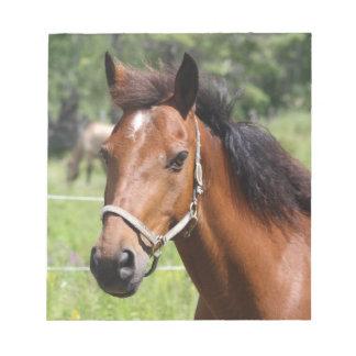 Horse Notepad