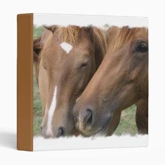 Horse Nuzzle Binder