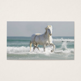 Horse Ocean Business Card